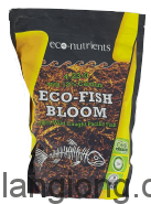 Eco – Fish Bloom